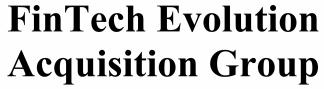 Fintech Evolution Acquisition ECM- Mar21