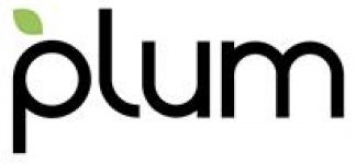 Plum Acquisition Corp I ECM- Mar21
